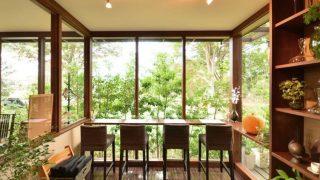 緑とガラスと木のレストラン