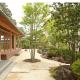 自然素材,注文住宅,和風住宅